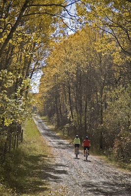 Wooded Trail, Saskatchewan