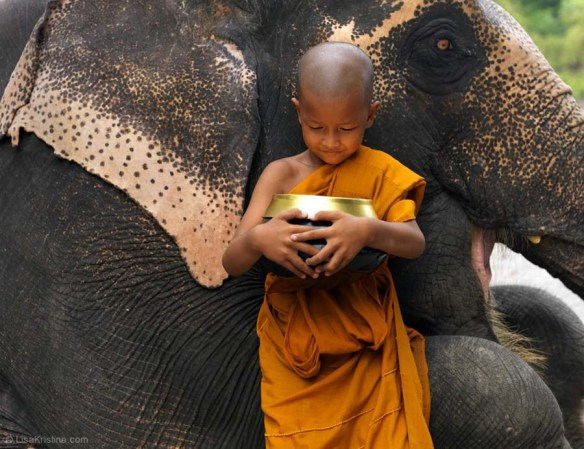 Little Monk with Elephant