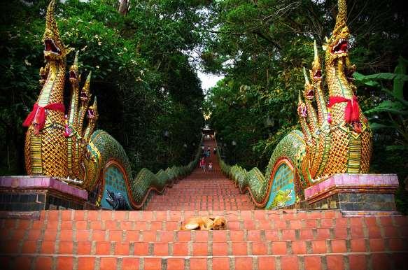 Stairway to Enlightenment, Thailand
